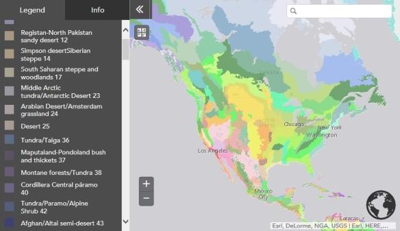 embedmap